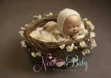 Natural NEST  Bundle